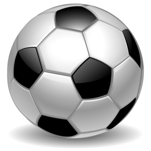 Sports-Ball-PNG-Clipart - Kopie